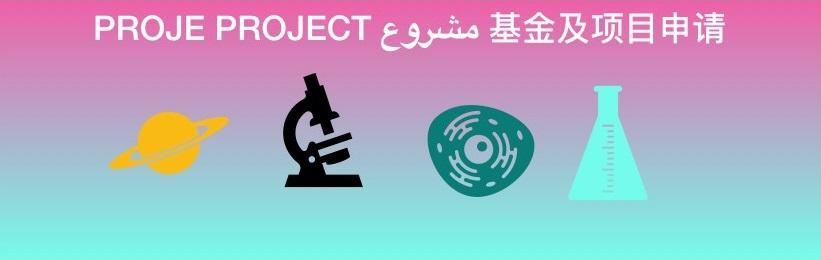 Proje Yazımı ve İstatistik Analiz Hizmetleri